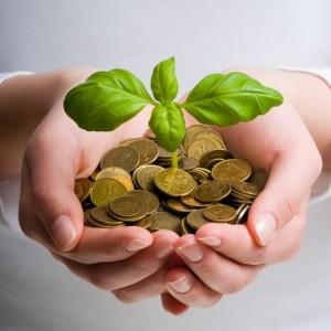 hands, money, tree